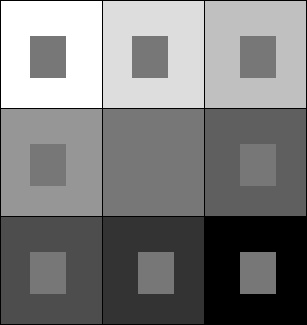 Perception and color in images